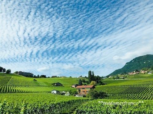 スイス旅行Ⅱ_d0277949_06080480.jpg
