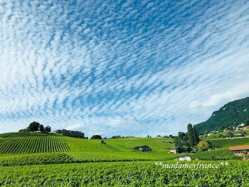 スイス旅行Ⅱ_d0277949_06125897.jpg