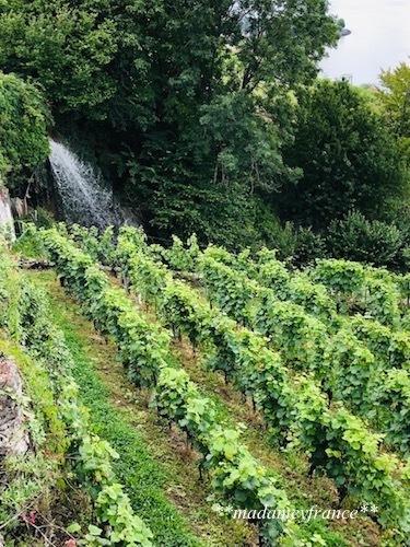 スイス旅行Ⅱ_d0277949_06153130.jpg