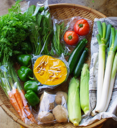 今週の野菜セット(9/14~9/18着)_c0110869_14024814.jpg