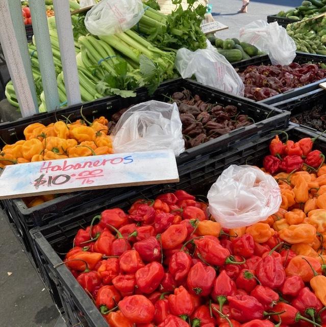 オレンジのファーマーズマーケットに行く_e0350971_13304565.jpg