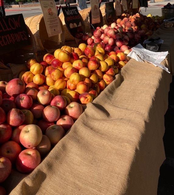 オレンジのファーマーズマーケットに行く_e0350971_13305512.jpg