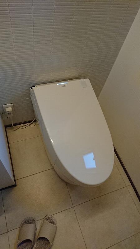最高級トイレ_d0358411_17094867.jpg