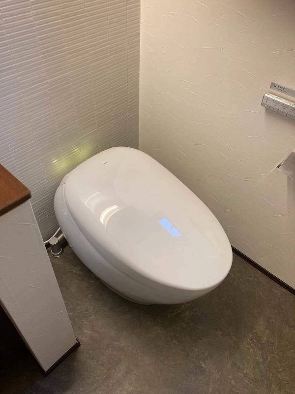 最高級トイレ_d0358411_17100778.jpg