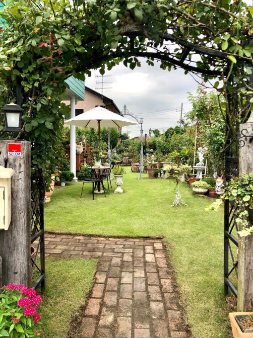 今日は芝剥がしの日(汗をかくために♫)と久しぶりのラパリジェンヌ♡ - 薪割りマコのバラの庭