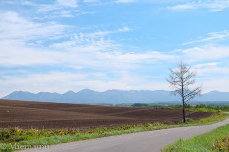初秋の就実の丘~9月_d0340565_19504343.jpg