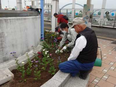 名古屋港水族館前花壇の植栽R3.9.8_d0338682_09295482.jpg