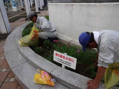 名古屋港水族館前花壇の植栽R3.9.8_d0338682_09353832.jpg