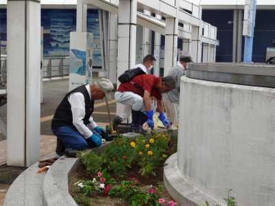 名古屋港水族館前花壇の植栽R3.9.8_d0338682_09361628.jpg
