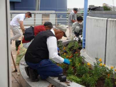 名古屋港水族館前花壇の植栽R3.9.8_d0338682_09363771.jpg