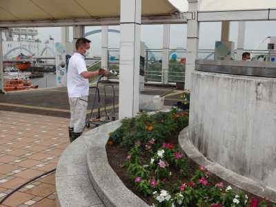 名古屋港水族館前花壇の植栽R3.9.8_d0338682_09364824.jpg