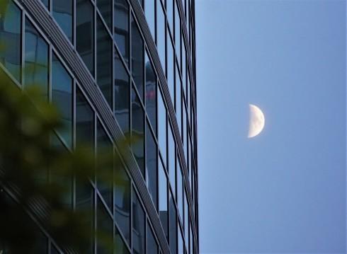Half Moon @ Tokyo_f0006713_22511982.jpg