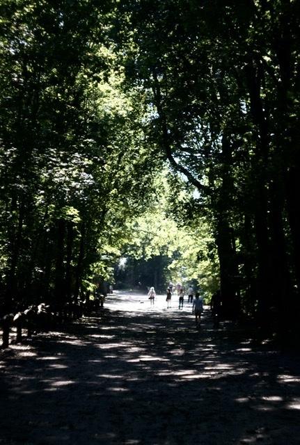 湖畔散歩はブランチ後が良い。_c0180686_04482285.jpeg
