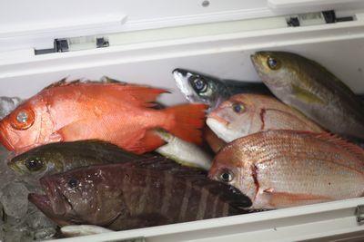 9/4~9/16 息子たちの帰省 魚料理_f0196800_18502219.jpg