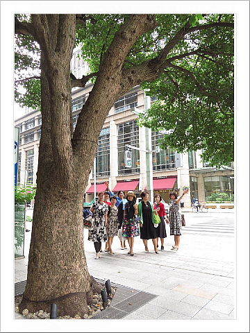 日本橋で、アクション街歩き。_d0046025_22224965.jpg