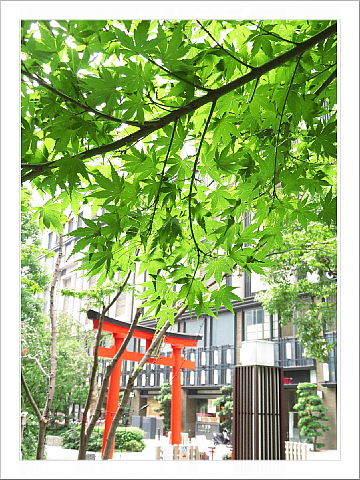 日本橋で、アクション街歩き。_d0046025_22261912.jpg