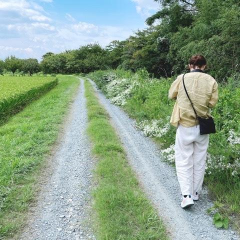 『自然の中をお散歩&フラワーレッスン』福岡_a0335560_11194321.jpeg