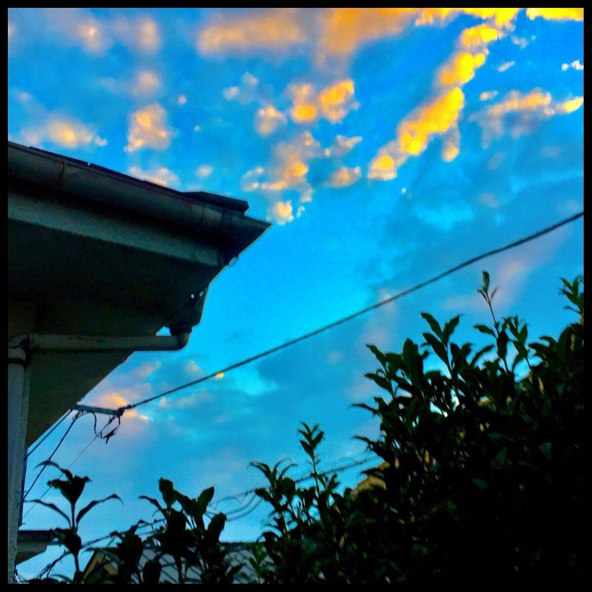 9月16日(木)やれやれといやはや_c0026089_20121452.jpg