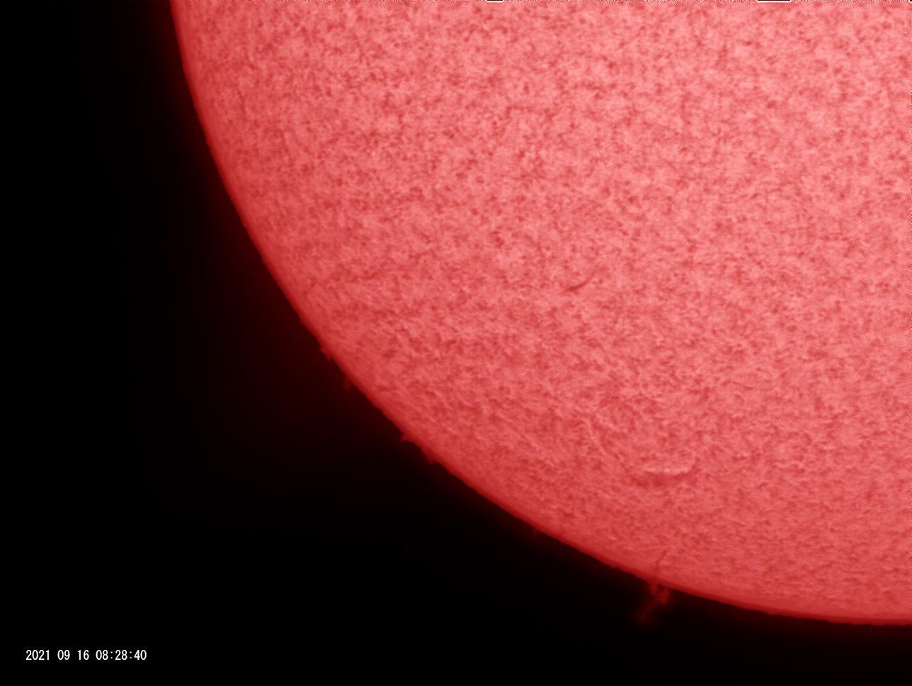 9月16日の太陽_e0174091_19001844.jpg