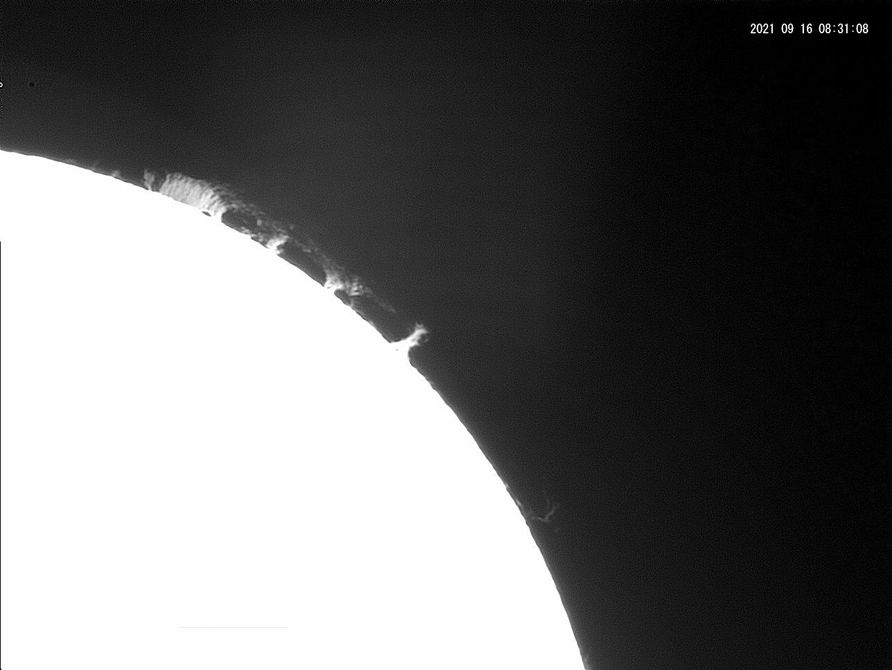 9月16日の太陽_e0174091_19002946.jpg