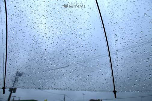 サーっと雨が降ってきました(≧▽≦)_c0140599_15541454.jpg