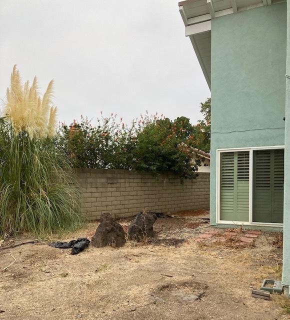 裏庭がすっきりしすぎた。。。_e0350971_12264583.jpg