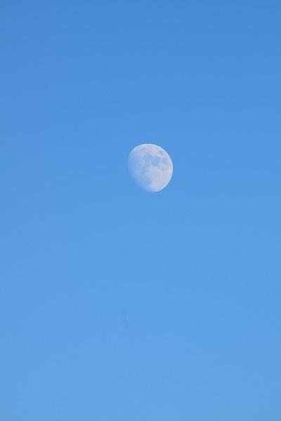 夏の終わりと月と台風の接近_d0035895_22030535.jpg