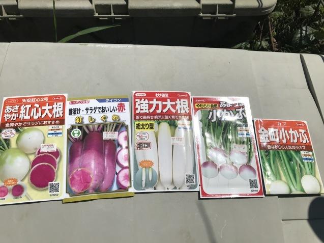 9月は畑仕事が忙しいですよね~_c0369304_08423113.jpg
