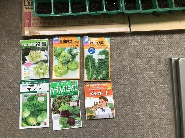 9月は畑仕事が忙しいですよね~_c0369304_08554063.jpg