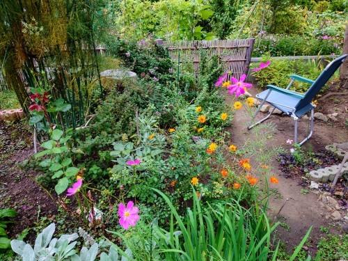 806、白露、秋の庭に花ふたたび_e0323652_12561101.jpg