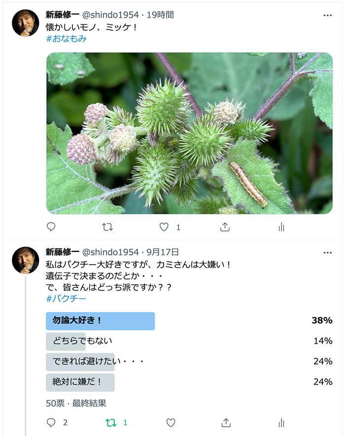 2021/09/18 パクチー Twitterアンケート_b0171364_12501950.jpg