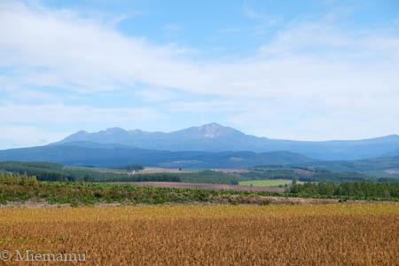 初秋の就実の丘から大雪連峰~9月の就実_d0340565_19271886.jpg