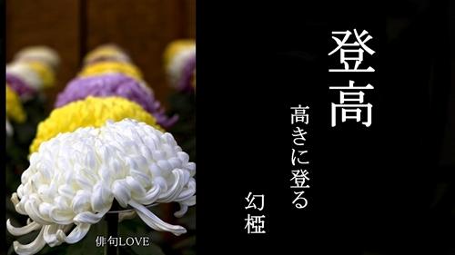 俳句LOVE 『登高(高きに登る)/幻椏』_f0053297_17593592.jpg