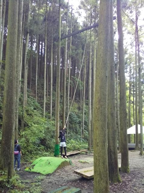森林浴でリフレッシュする日_c0292342_22212914.jpg