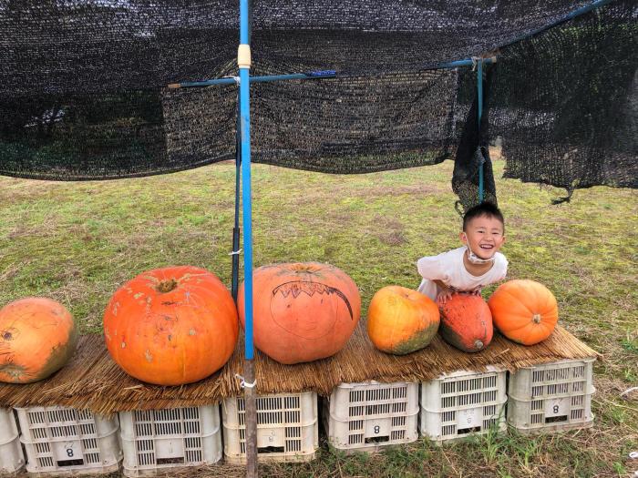 秋の風景 朝比奈 玉取 地区_d0099845_15525564.jpg