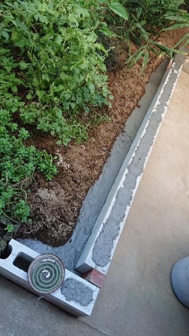 庭仕事♪_f0374160_22434962.jpg