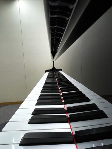 本日はグランドピアノ2台とアップライトピアノ1台の調律をして頂きました。_f0051464_20344336.jpg