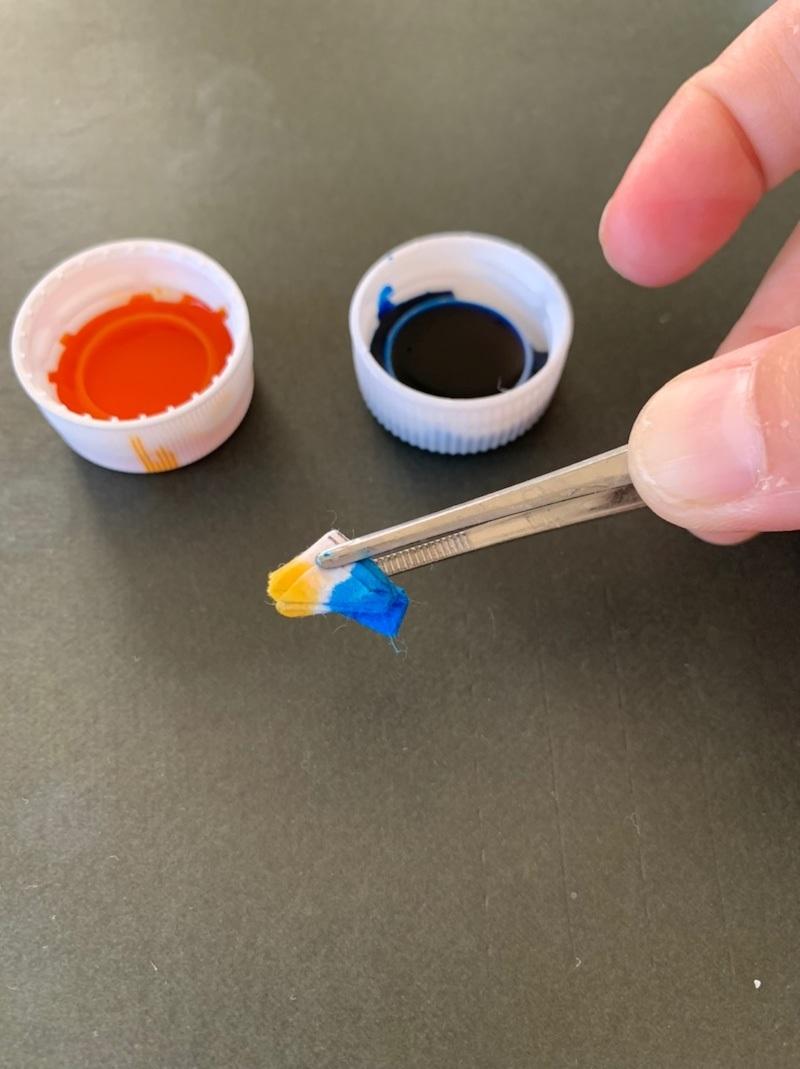 小さい紙で染める…田村さんのブログから_f0213891_06135630.jpg