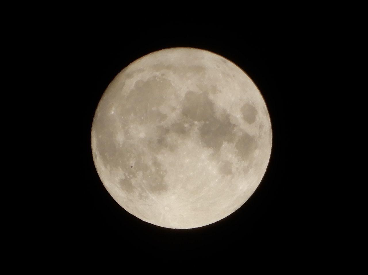 明日は中秋の名月_c0025115_21123081.jpg