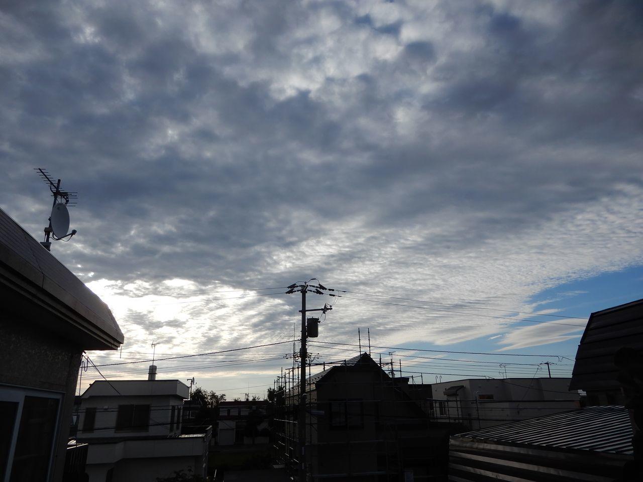 曇り、風強し_c0025115_21030049.jpg