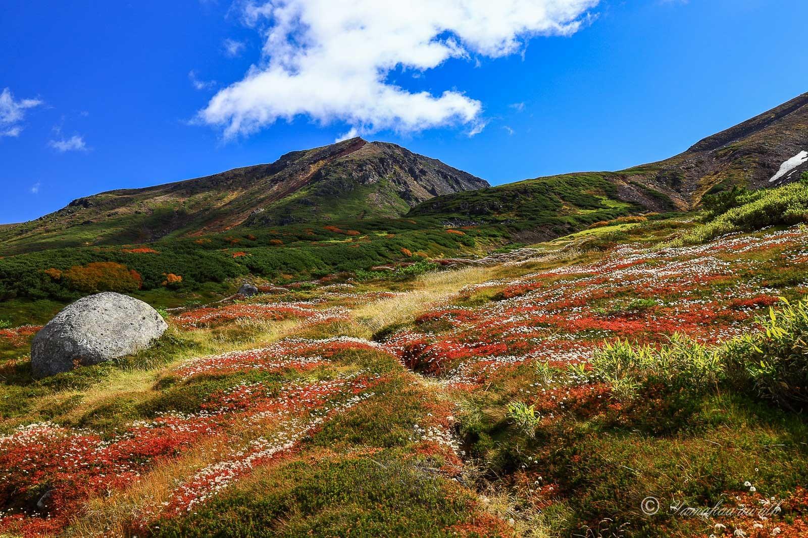裾合平から中岳温泉まで歩いてきた_b0243727_20043610.jpg