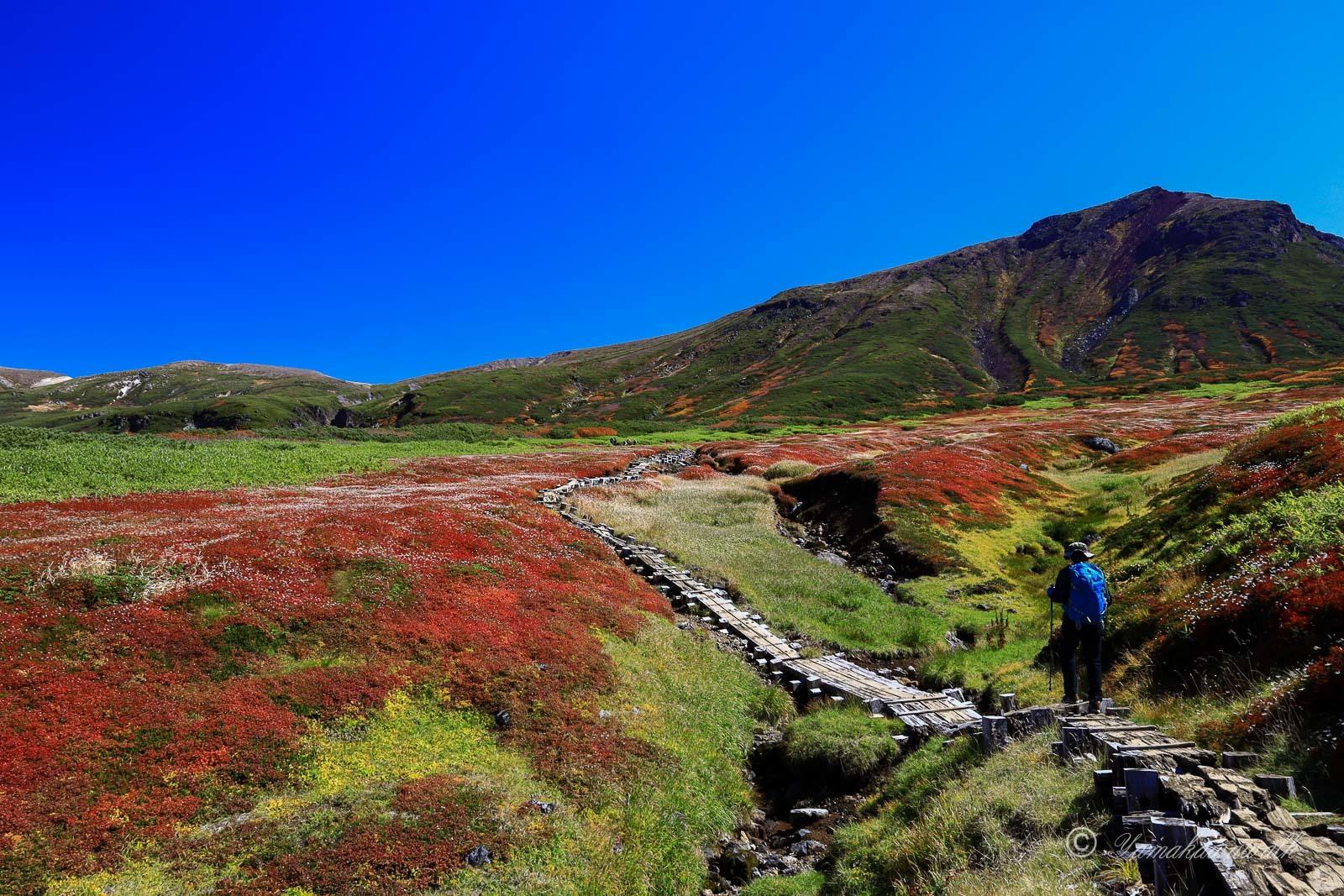 裾合平から中岳温泉まで歩いてきた_b0243727_20091593.jpg