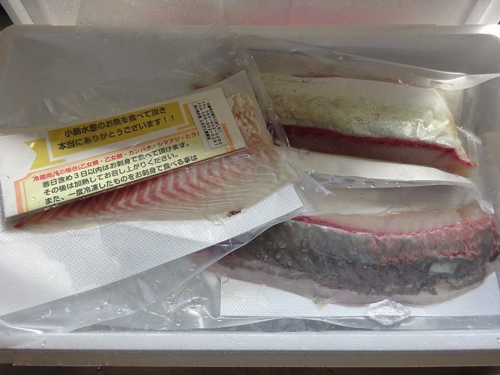 乙女鰤、乙女鯛、生鰹タタキ塩、高知かわうそ市場_d0061678_10365493.jpg