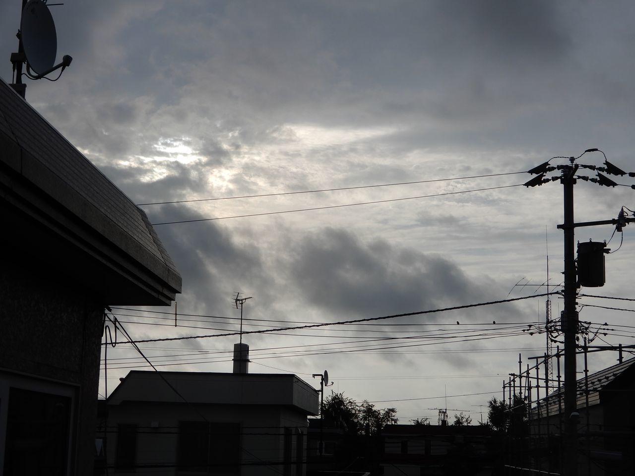 久しぶりに雨らしい雨が降りました_c0025115_21451748.jpg