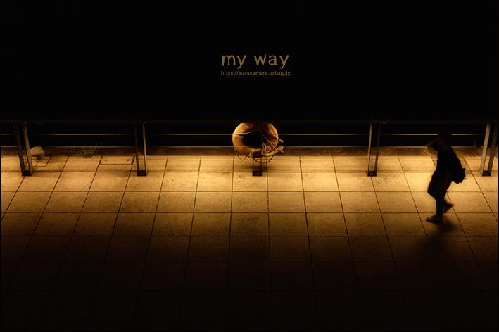 my way_f0100215_21282516.jpg