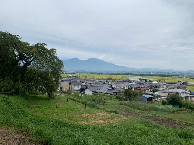 軽井沢から西へ。キッチンカーを求めて五郎兵衛新田へ。_d0035921_09333103.jpg