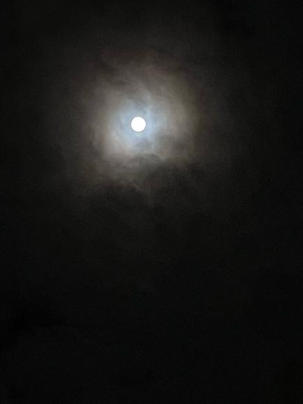 今日は中秋の名月_d0116430_22303766.jpg