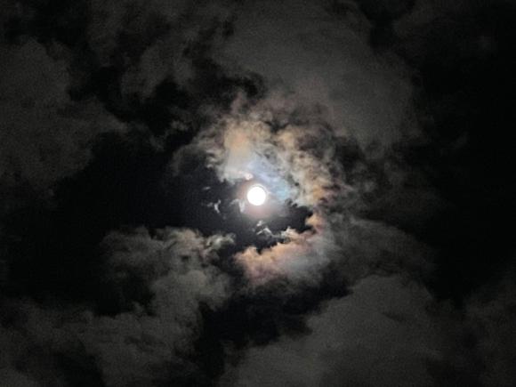 今日は中秋の名月_d0116430_22465714.jpg