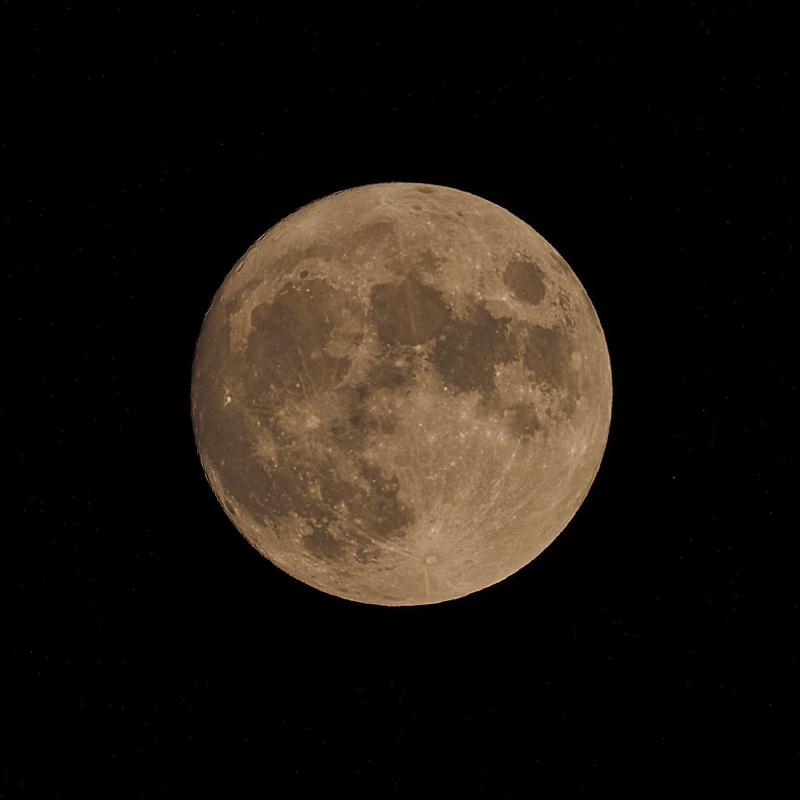 中秋の名月_d0283373_17005846.jpg
