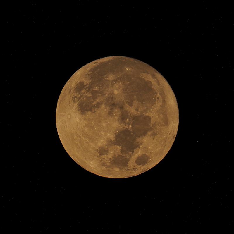 中秋の名月_d0283373_17060749.jpg